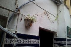 fugas_de_aguas_20111103_1359129211