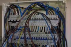 nuevo_20091207_1571854079