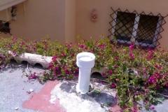 vicente_20091207_1669428796